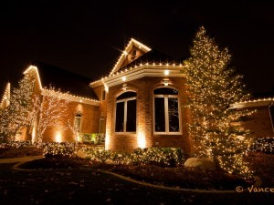 The trees and bushes are decorated with Christmas lights.