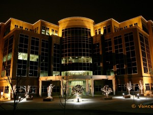 Hundreds of lights decorate this office building and the trees.