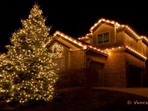 This Christmas tree is on the corner of the neighborhood block.