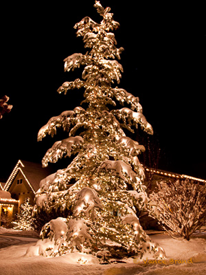 The Christmas Light Professionals Park City Ut
